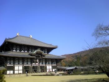 Nara8_081203